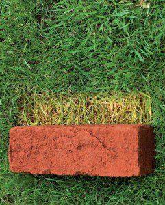 De duurzame Beeksteen is 65 mm dik en toepasbaar bij renovaties en nieuwbouw