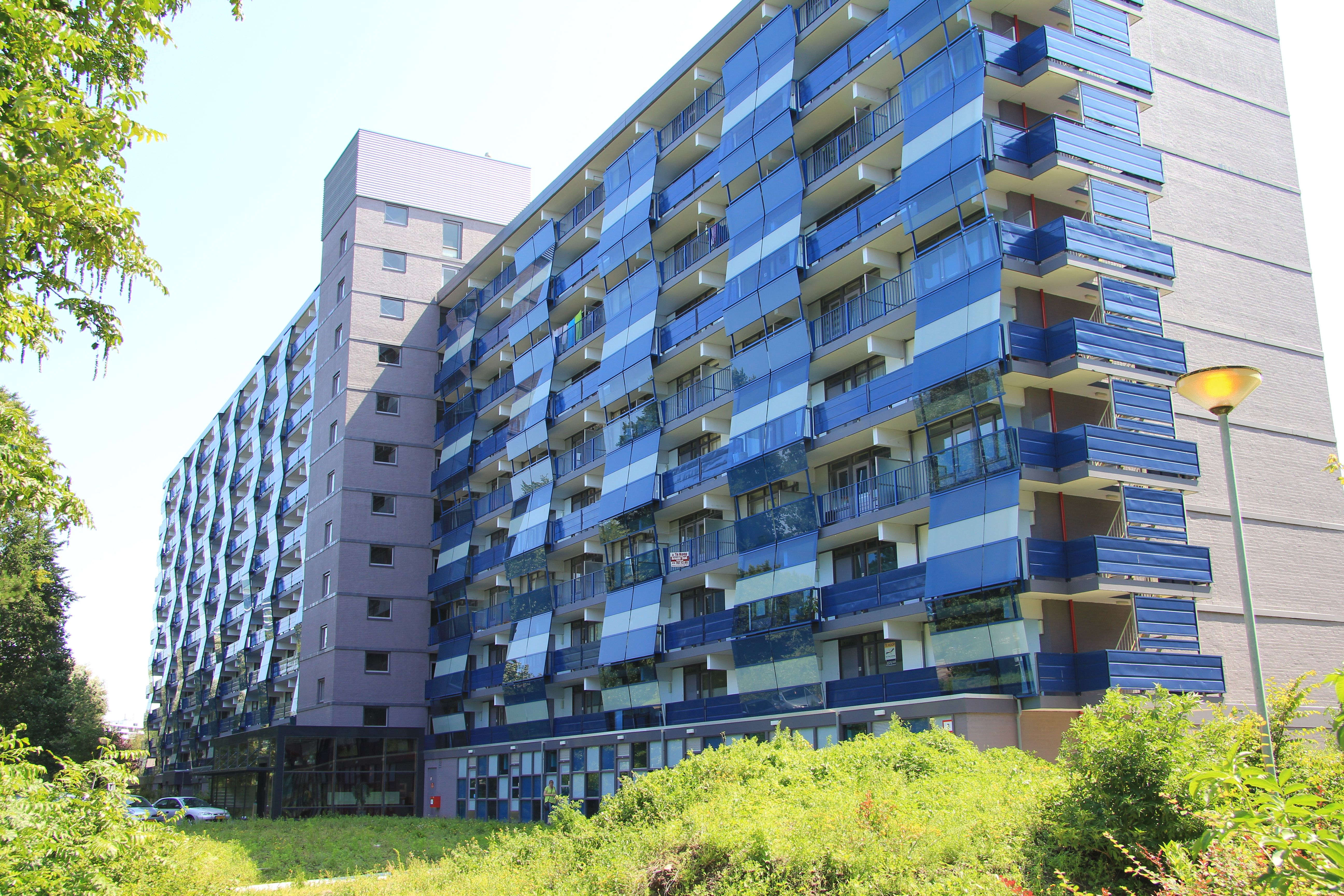 Gevels rijswijkse flats krijgen kleur » bouwwereld.nl