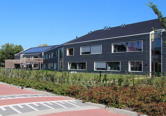 De gebouwen zijn bekleed met schaaldelen van douglas pine, met een variabele lengte.