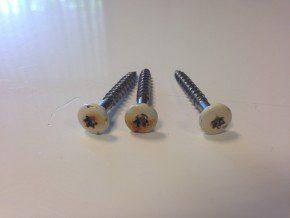 Door chloride belaste schroeven. De koppen vertonen corrosie, maar de schachten zijn (nog) in een goede conditie.