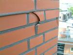 Aardvevingsbestendig ontwerpen