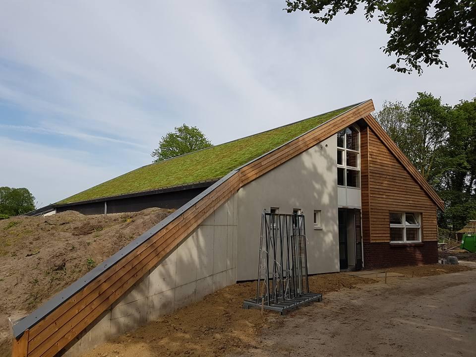Groene Tornado vergroent Nederlandse schuurdaken