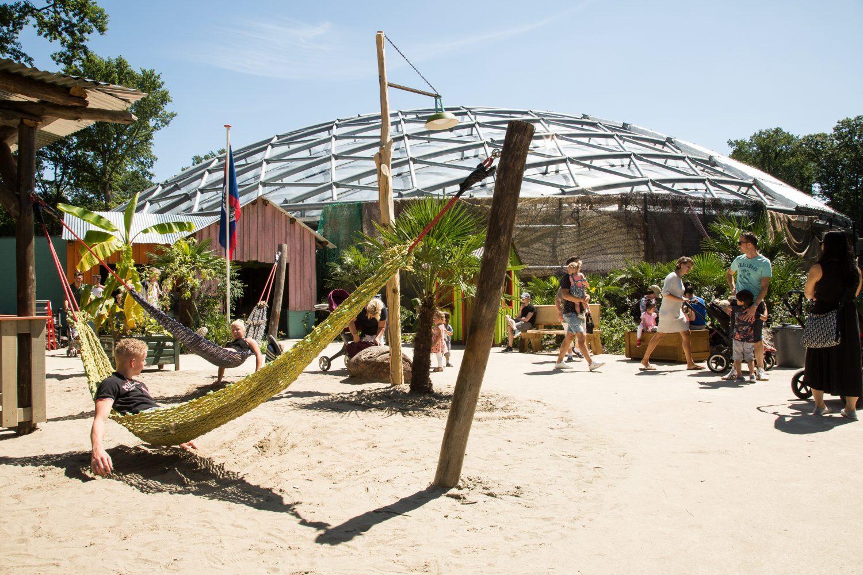 Mangrove, Burgers Zoo, koepel
