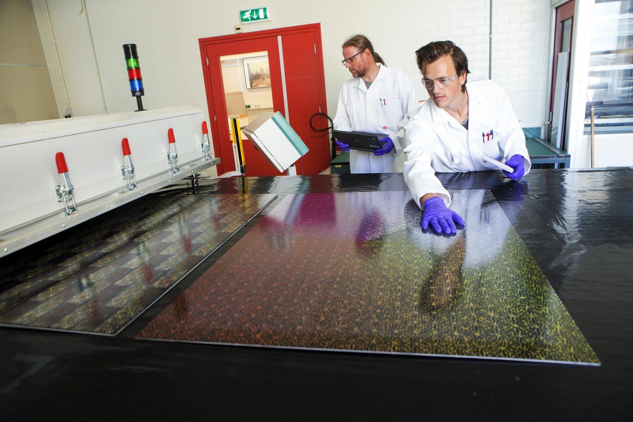 Dutch Solar Design-gevelelement