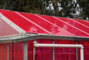 zonnepanelen tuinbouwkas WSPVs