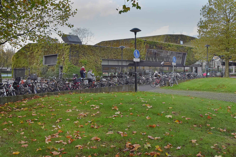 sportplaza mercator, amsterdam, groene, gevel, hoofdingang