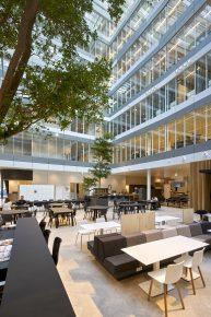 Het atrium heeft een groene uitstraling door het gebruik van natuurlijke materialen zoals hout en de plaatsing van bomen. Architect UNStudio. Interieurarchitect OTH. Foto Hans Wilschut.