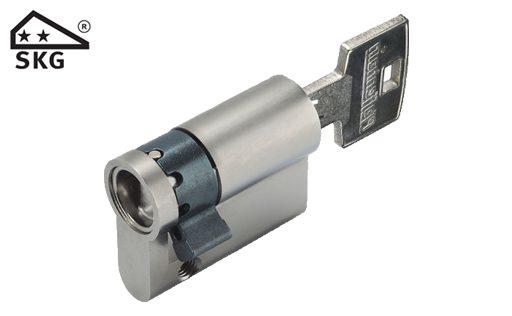 SKG 2 cilinder (foto Deur-cilindersloten.nl)