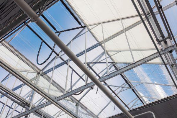 Het dak van de kas bevat innovaties en energetische verbeteringen, zoals diffuse lichttoetreding en fresnel-lenzen die het licht concentreren op zwarte watervoerende leidingen.