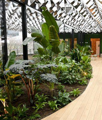 Op de bovenste verdieping zijn groene daken aangelegd die binnen en buiten verbinden