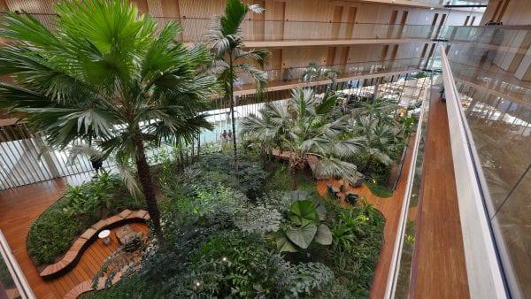 Het atrium is met zijn subtropische palmentuin een echte blikvanger.